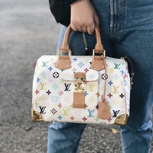 Bolsa-Louis-Vuitton-Speedy-30-Monogram-Multicolor