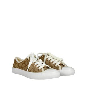 Tenis-Coach-Canvas