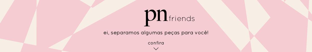 Banner PN Friends